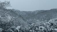 2月12・13日と大雪の中ご利用頂きありがとうございました。