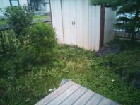8月24日。草刈り作業でした。